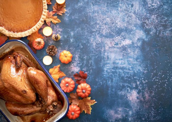 thanksgiving turkey and pumpkin pie